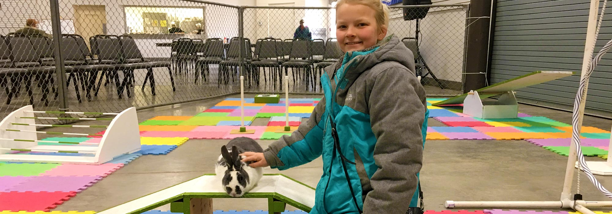 Rabbit Agility and Confirmation Show